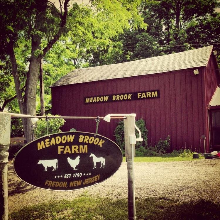 Meadow Brook Farm